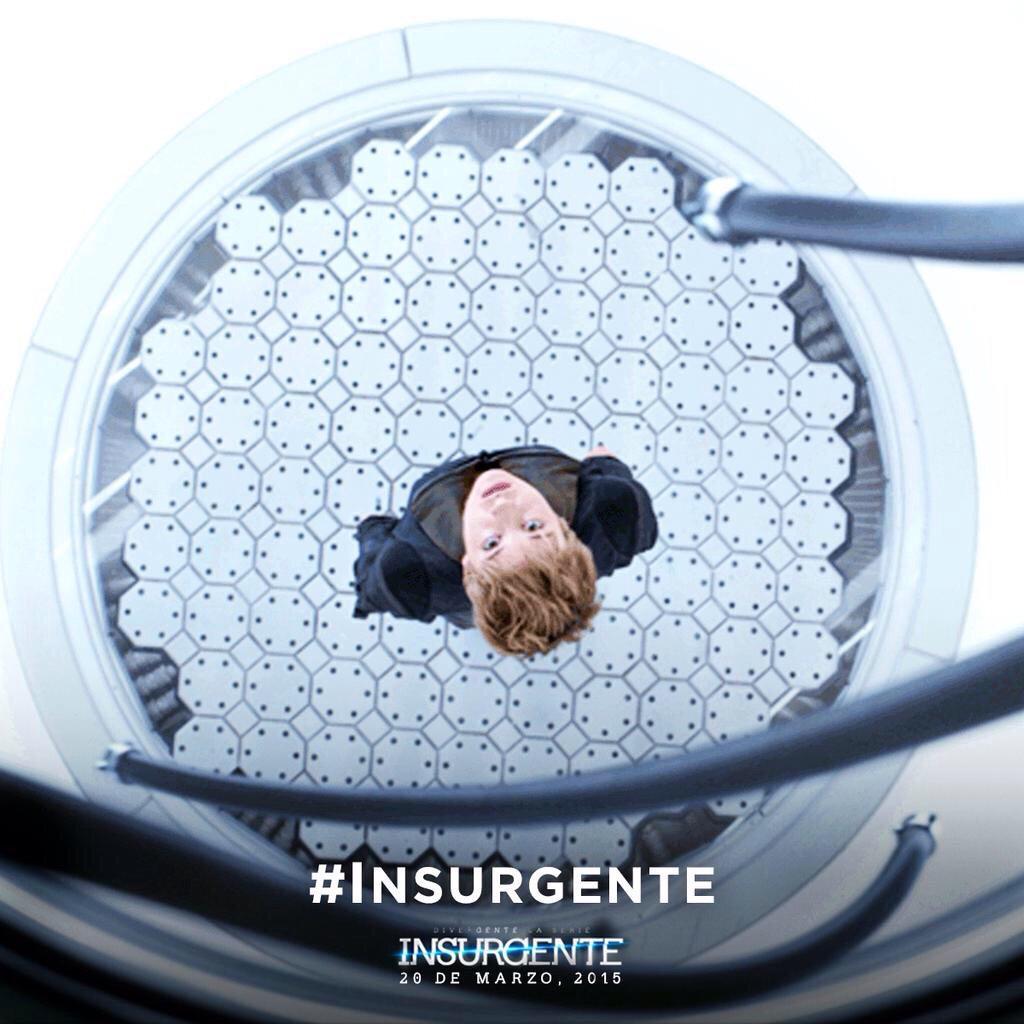 Insurgent stills