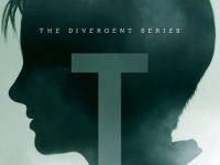 See all 9 'Insurgent' Silhouette Posters