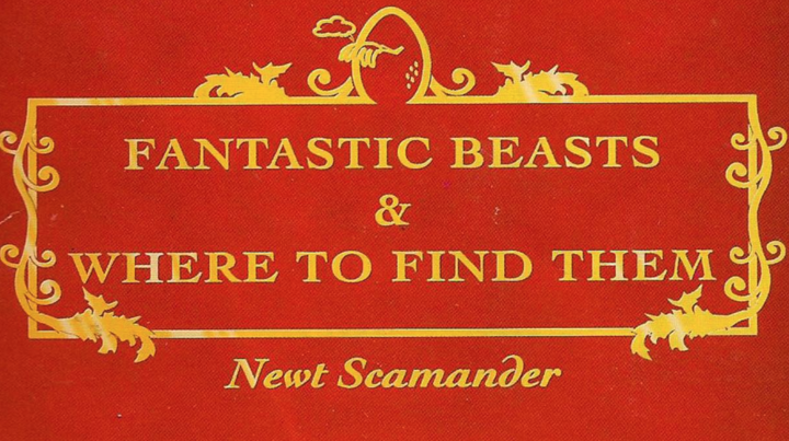'Fantastic Beasts and Where to Find Them' Filming Has Begun!
