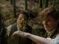 Final 'Fantastic Beasts' Trailer Released!